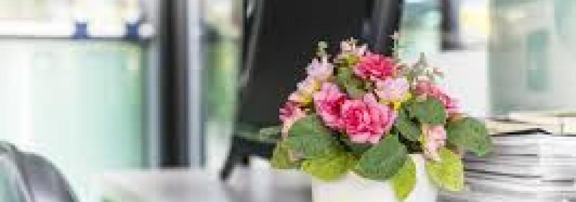 Mandar Flores No Trabalho, Escola ,Faculdade.