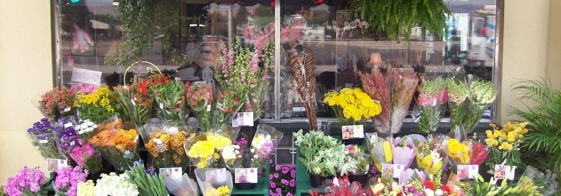 Floricultura Manaus